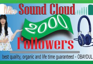 i will do fast soundcloud 2000 organic followers. non-drop, 100% real and life time guarantee.