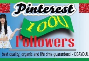 i will do fast 1000 Pinterest followers.best quality non drop organic and life time permanent.
