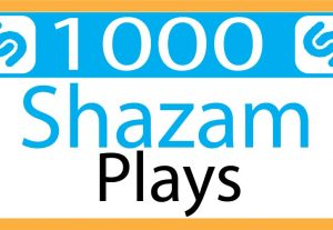i will provide shazam 1000 plays. organic 100% real and life time permanent.