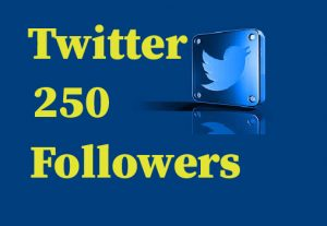 250 Twitter followers, best Quality, Non Drop And Lifetime permanent