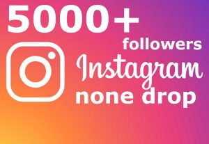 I send you 5000+ Instagram followers none drop