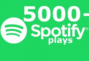 Spotify Music Promotion 5000 + Plays and 500+ Followers