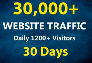 Get 1200+ Daily Real Website Traffic for 30 Days