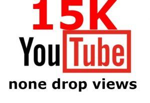 I send you 15K none drop YouTube views none drop guaranteed