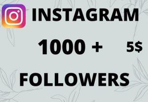 do 1000 HQ instagram Followers Instant