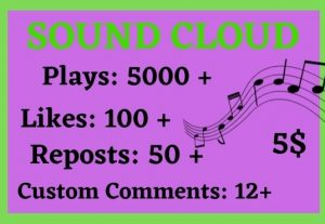 5000 SOUNDCLOUD PLAYS 100 LIKES 50 REPOSTS AND 12 CUSTOM COMMENTS