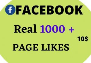 1000 Real Facebook Page Likes Lifetime Guarantee