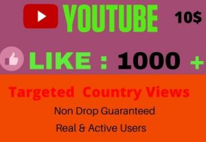 I Will give Organic YouTube Promotion 1000 Likes