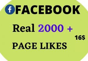 I will give 2000+ Real Facebook Page likes Non Drop in 24 Hours