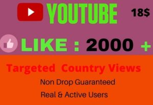 will give 2000+ YOUTUBE like, I will Promote Your video, NON DROP, Lifetime guaranteed