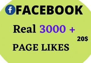 Give 3000+ Facebook Post Likes Real High Quality & Non Drop Service