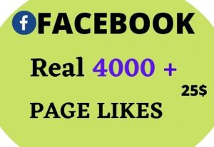 I will give 4000+ Facebook Post likes Non Drop in 24 Hours