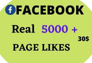Instant 5000+ facebook fanpage post/photo/status likes.