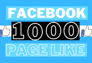 Get 1000+ Facebook Page likes Lifetime Guaranteed