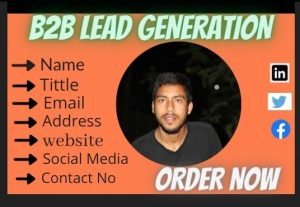 I will Collect (100) B2B leads generation targeted in your business