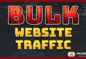 Bulk Website Traffic 30 days long