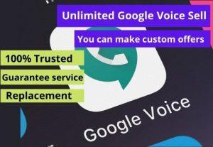 Get  10 Google voice USA verify