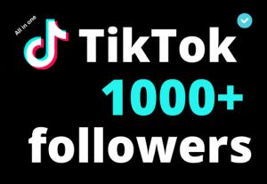 I will add 1000+ TikTok followers ,all followers are 100% real and organic.