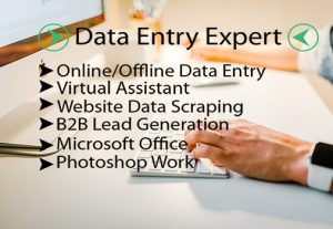 I will do the fastest data entry, website scraping, data collection, best virtual assistant