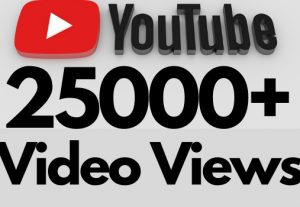 I will add 25000+ REAL AND non drop YouTube video views
