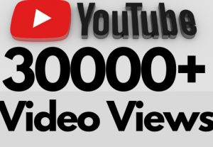 I will add 30000+ REAL AND non drop YouTube video views