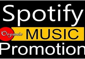 I will add 500+ Spotify Artist followers