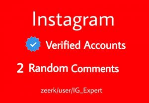 2 Random Comments From Instagram Verified Accounts Real And Active