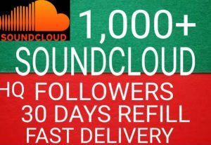 1000 soundcloud followers fast delivery