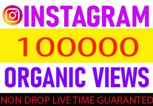 I Will provide your Instagram ORGANIC views Non Drop Live Time Guaranteed