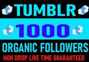 I Will Provide tumblr 1000 Organic followers Non Drop Live Time Guaranteed