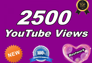 I will give you 2000 YouTube Views