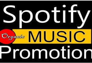 Get 15,000 to 957,000 Spotify ORGANIC Plays From HQ Account of USA or A+ Country CA/EU/AU/NZ/UK. Permanent Guaranteed