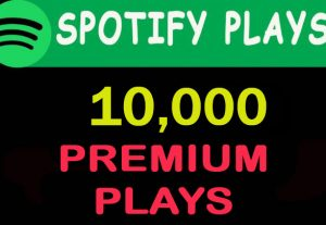 10,000 Spotify PREMIUM plays from TIER 1 countries
