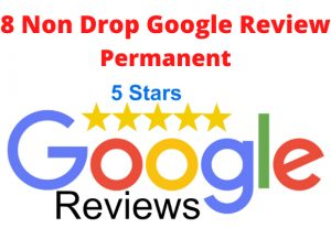 I Will Provide You 8 Permanent Google Review