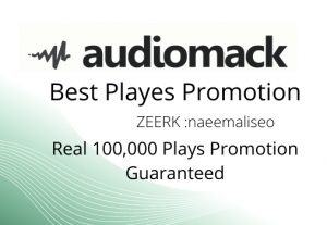 I will deliver quickly Real 100,000 audiomack Plays Promotion Guaranteed