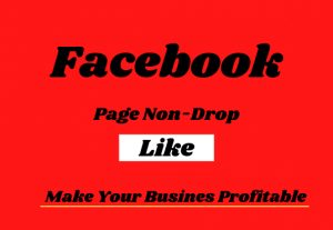 I will provide a 4000+ Facebook page Real Like.