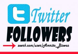 Get 1000+Twitter Followers, High Quality, Non-Dropped Guarantee