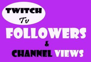 Get 1000 Twitch Followers, Real Or Organic, Non Drop Guarantee