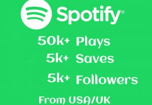 50k+ Spotify Track Plays, 5k+ Saves and 5k+ Followers High-Retention.