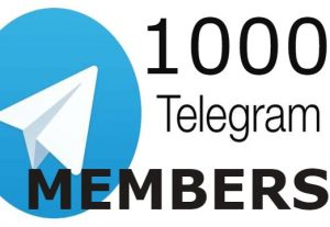 I will provide you 1000 Telegram Channel Members OR Group Member