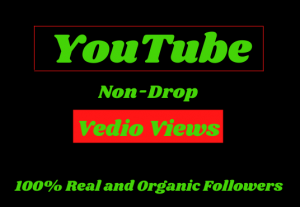 I will promote 40000+ YouTube videos real views and 5000+ like for monetization