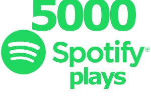 I can provide you 5000+ spotify track plays ROYALTIES ELIGIBLE