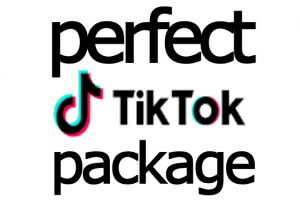 i will send you BEST Organic TikTok video and fans Promotion