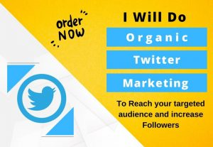 I will do twitter marketing and promotion with organic growth for 30 days