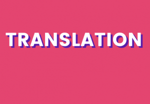 I will do Professional translation in any language