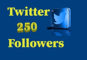 200+ Twitter Followers, 100% real and lifetime permanent