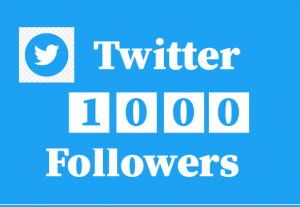 1000+ twitter followers, non drop, 100% real and lifetime permanent