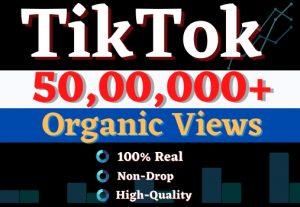 Get 50,00,000+ TikTok Organic Views. High Quality, Non-drop, Lifetime User Guaranteed