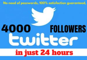 I will give 4000 twitter followers in 24 hours
