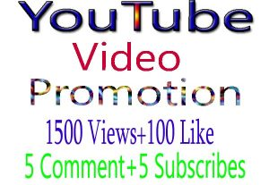 1500 High Retention Lifetime Guaranty Youtube Video Views 100 likes 5 subscribes 5 comments
